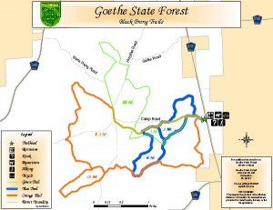 Goethe Forest Black Prong Trailhead