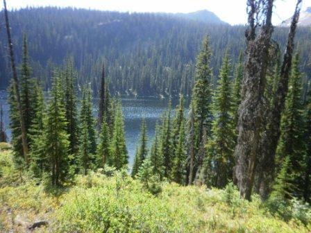 Owl Creek Packer Camp
