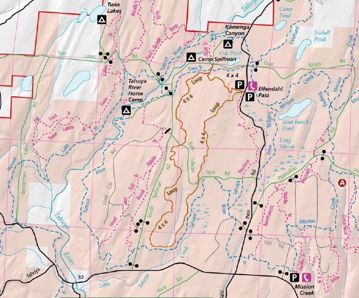 Tahuya River Horse Camp - Tahuya State Forest - TrailMeister