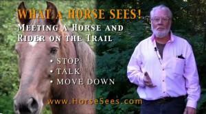 horsesees