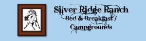 silver_ridge